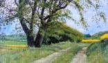 Výstava diel Pavla Kohúta - Strom s poľnou cestou