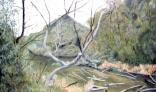 Výstava diel Jána Kollároviča - Na brehu Malého Dunaja